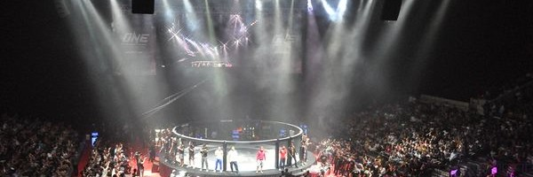 Mixed Martial Arts 2011